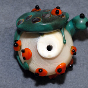 Turtle With Ladybugs