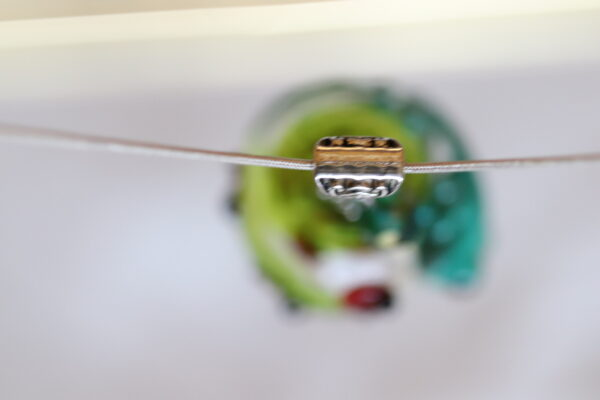 Frog 2-7